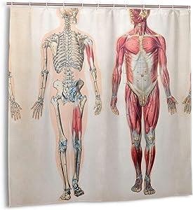Jhonangel Shower Curtain,Vintage Anatomy Human Body Bath Curtain Set with Hooks