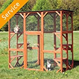 Catio Assembly