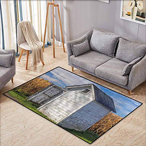 Door Rug for Internal Anti-Slip Rug Outhouse Country Farm Life Cottage with Wheat and Grass Under Sky Image Marigold Green Blue and White Anti-Fading W5'2 xL4'6
