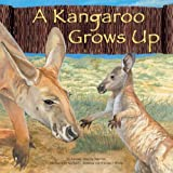 A Kangaroo Grows Up, Amanda Doering Tourville, 1404831606