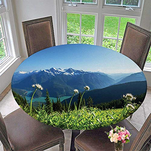 - Round Polyester Tablecloth Table Cover Scenery Decor Lake and Snowy View Dandelions Thistle Flowers Sky Print White Blue for Most Home Decor 47.5