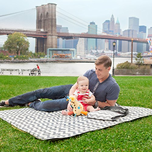 Skip Hop Baby Infant & Toddler Central Park Waterproof Convertible Outdoor Blanket & Detachable Cooler Bag, Multi Chevron