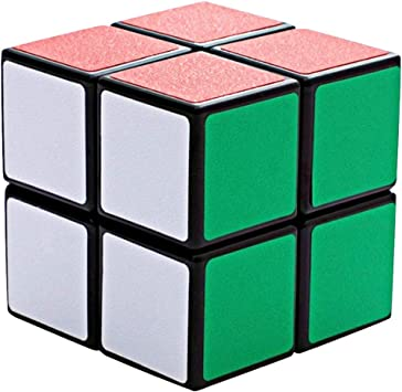 COOJA 2x2 Cube, Cubo Mágico Speedcube Magic Cube Rompecabezas ...