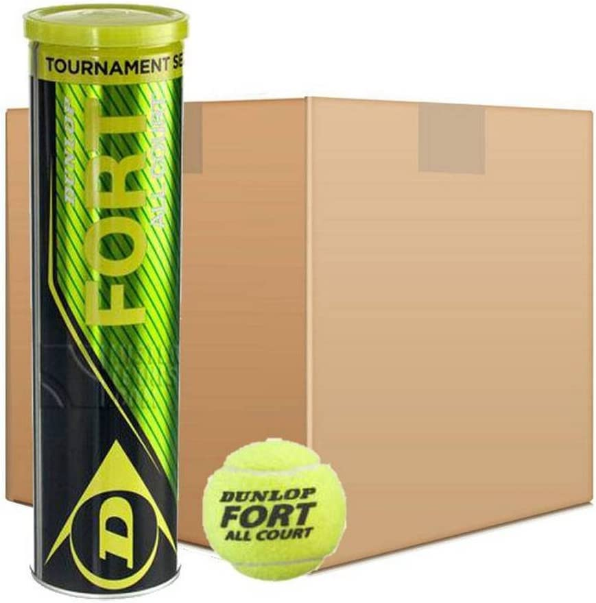 Pelotas Tenis Dunlop Fort All Court TS 18x4