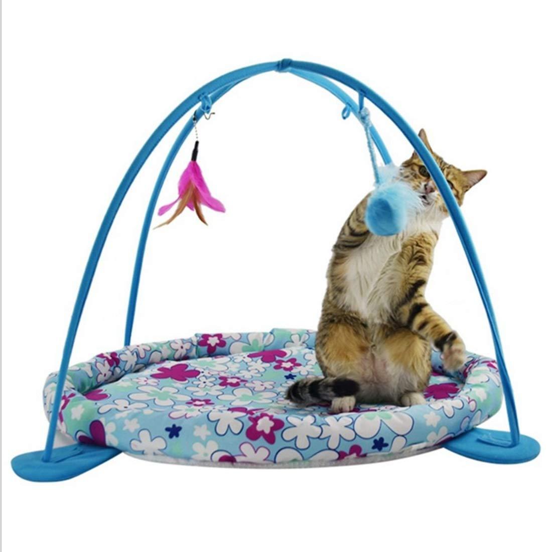 Pearlshop Orange, Blue, Pink Cat Tent Pet Toy Cat Hammock Toy (Color : Blue) by Pearlshop