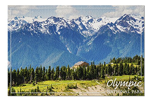 Olympic National Park - Hurricane Ridge Visitor Center (20x30 Premium 1000 Piece Jigsaw Puzzle, Made in USA!)