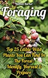 Foraging: Top 25 Edible Wild Plants You Can Find In The Forest: Identify, Harvest & Prepare