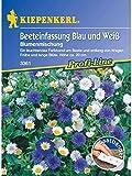 Blumenmischung Beeteinfassung Blau und Weiss einjährig Saatband