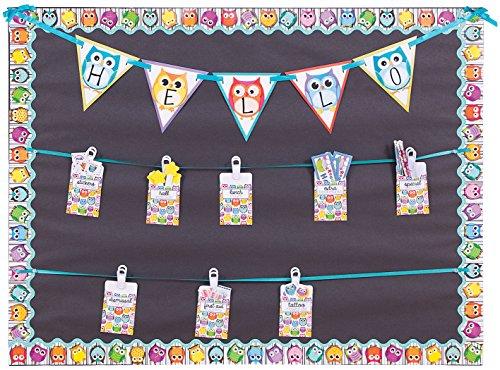 Carson Dellosa Colorful Owls Borders (108123)