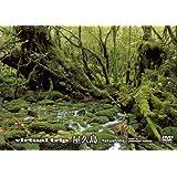 virtual trip 屋久島 (低価格版) [DVD]