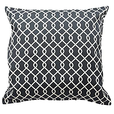 Traditions By Waverly 14311018X018OYX Ellis 18-Inch by 18-Inch Decorative Pillow Set (2 Pack), Onyx - 2-Pack pillow set Coordinating Ellis window panels and valance sold separately 100% polyester - living-room-soft-furnishings, living-room, decorative-pillows - 61L8XB659WL. SS400  -