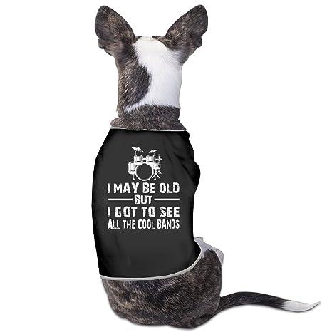 I se puede OLD pero ver todas THE COOL bandas perro Jersey abrigos perro chaqueta camiseta