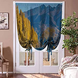 Blackout Shades Nature Tie-Up Roman Shades Sunken Tree Lake on Mountain Range Exquisite Rural New Zealand Scenery Home Fashion Window Treatment Earth Yellow Light Blue Rod Pocket Panel, 42