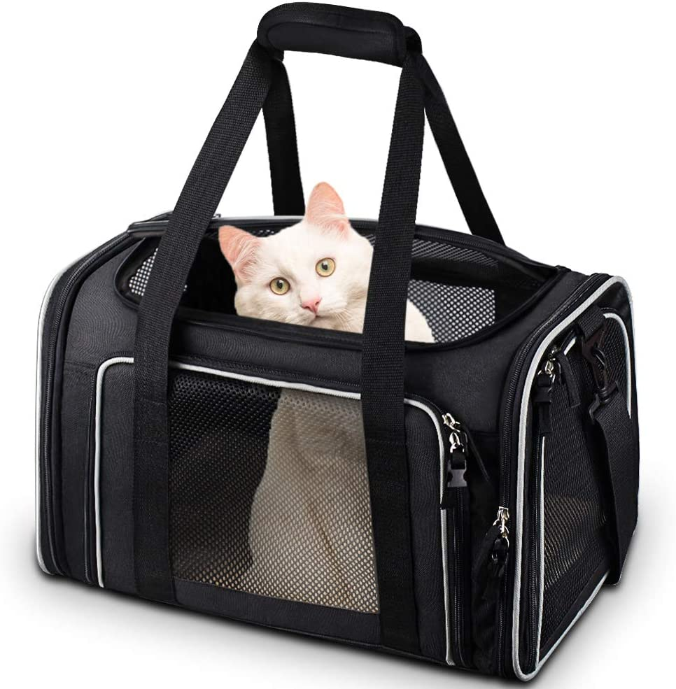 Best Cat Carrier For Car Travel 16