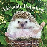 Adorable Hedgehogs 2018: 16-Month Calendar September 2017 through December 2018