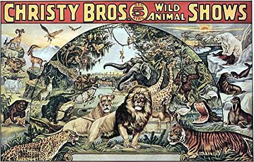 Christy Bros Big 5 Ring Wild Animal Shows Circus Poster (36 x ()