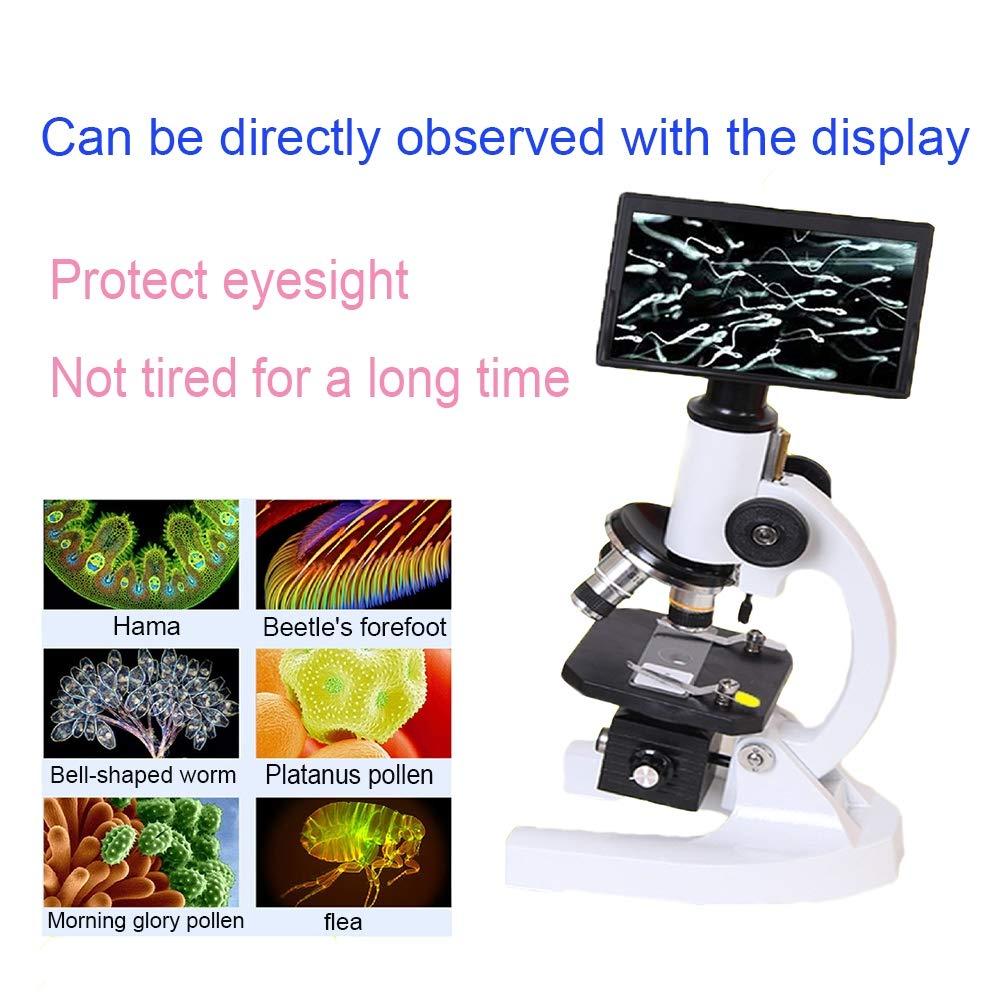 Qczgdhj Compound Microscope, Professional Monocular Biological Microscope Set, 40X-640X Large Range Magnification by Qczgdhj