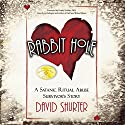 Rabbit Hole: A Satanic Ritual Abuse Survivor's Story Audiobook by David Shurter Narrated by David L. White