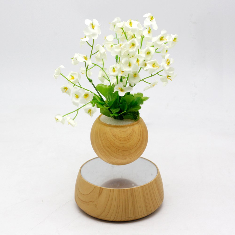 Levitation Wooden Bonsai Pot for Home and Office Decorations-Creative Prsent Floating air Bonsai by floatingglobes (Image #1)