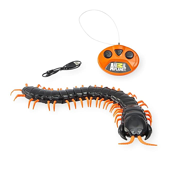 Amazon.com: Animal Planet gigante ciempiés de radio control ...