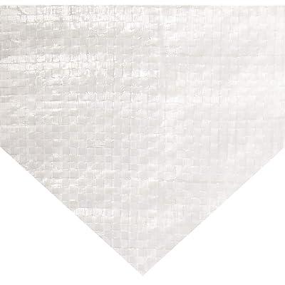 Erickson 57063 Clear White Economy Grade Poly Tarp, 12' x 16', 1 Pack: Automotive