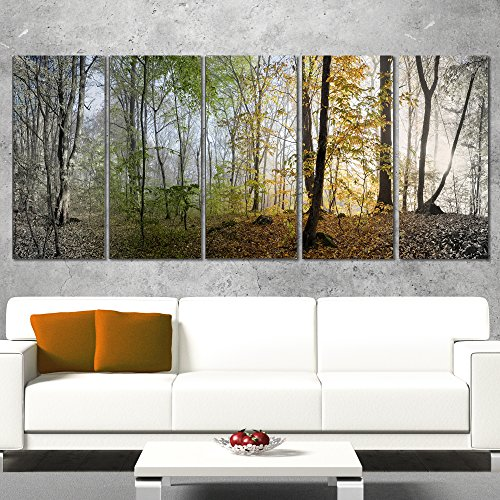 Designart Morning Forest Panoramic View Landscape Photo Canvas Print