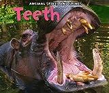 Teeth, Rebecca Rissman, 1432950495