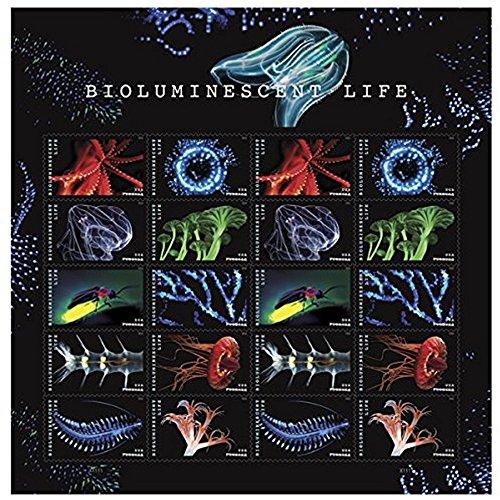 Pattern Postage Stamps - USPS Forever Stamp: Bioluminescence (1 Sheets (20 Stamps))