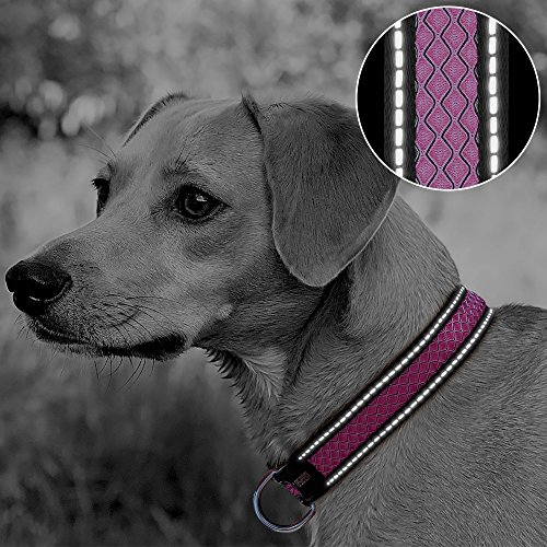 Reflective Dog Collar 3 Colors Padded Soft Breathable Mesh with Night Safety Reflective Stripes Pet Collar for Dog Training Walking (Large, - Collar Reflective Stripe