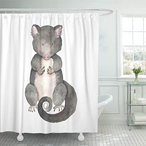 Review Emvency Shower Curtain Set