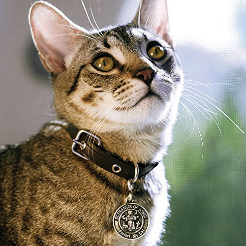 US Gifts St Francis Pet Medal - Cat, (Pack of 10)