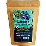WAYKANA Guayusa Loose Leaf Tea, 16 Ounce | Yerba Mate & Coffee Alternative Energy | Smooth Taste Organic Natural High Caffein