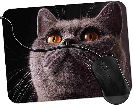 QCFW Alfombrilla de Ratón Gato de Ojos Amarillos Mirando hacia ...