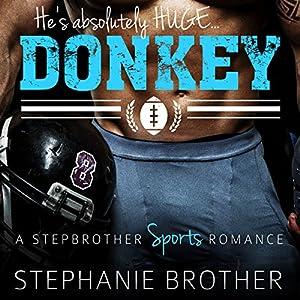Donkey Audiobook