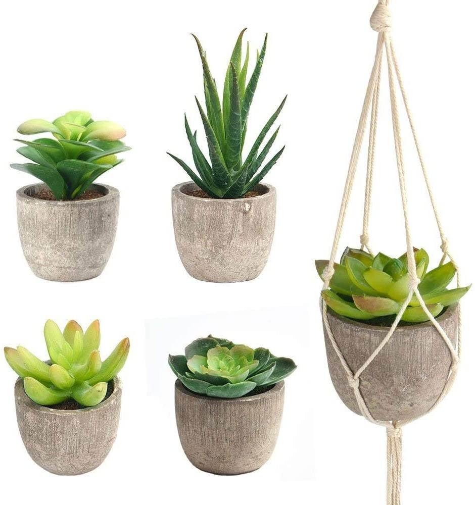 Vtete 7.5 Inch Succulent Plant Container Box with 4 Pcs Faux Plants and 30 Pcs Miniature Fairy Ornament DIY Kit