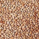 Kiki Foods Oloyin (Honey) Beans 3lb Pack