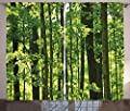 Nature Curtains by Ambesonne, Refreshing Lush Young Forest with Canadian Maple Trees Foliage Environment Image, Living Room Bedroom Window Drapes 2 Panel Set, Green Brown