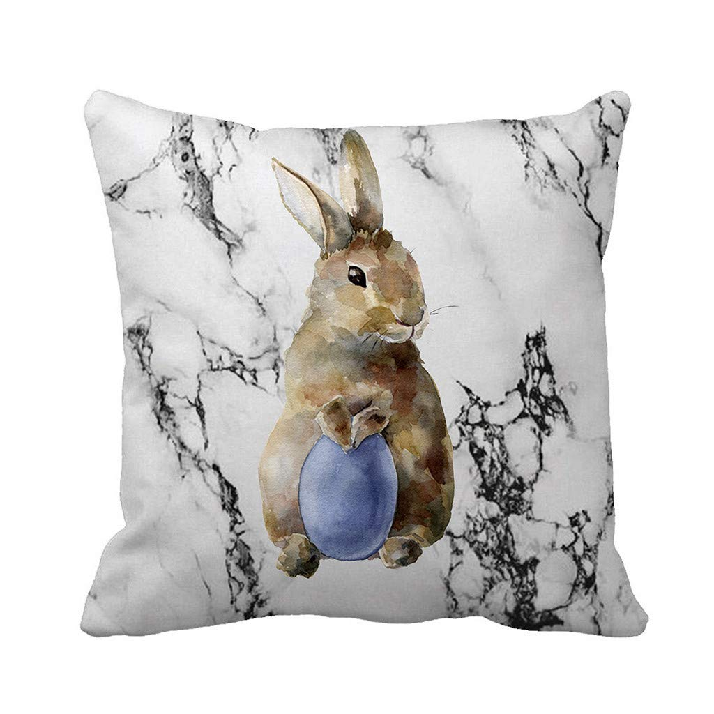 Sikye Happy Easter Removable Cover Cartoon Bunny Marble Pillow Case Festival Holiday Decor for Living Room Sofa Bed,Square (A2)