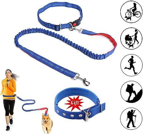 Correa Perro,Correa Perro Correr Manos Libres,Dog Walking Belt ...