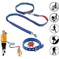 Correa Perro,Correa Perro Correr Manos Libres,Dog Walking Belt: Ideal para Correr con Las Manos Libres, Correr o Caminar