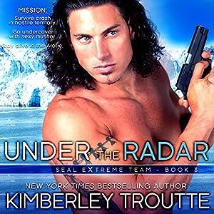 Under the Radar Audiobook