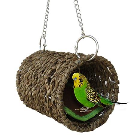 mamajglge Hamaca para Mascotas, Cama Nido para pájaros, túnel para ...