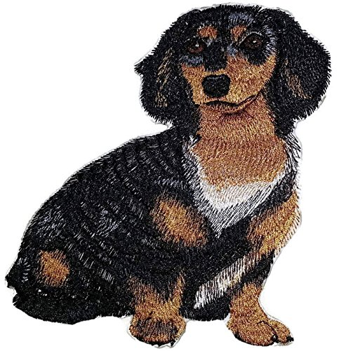 ortraits [Dachshund Longhair] Embroidery Iron On/Sew patch [6