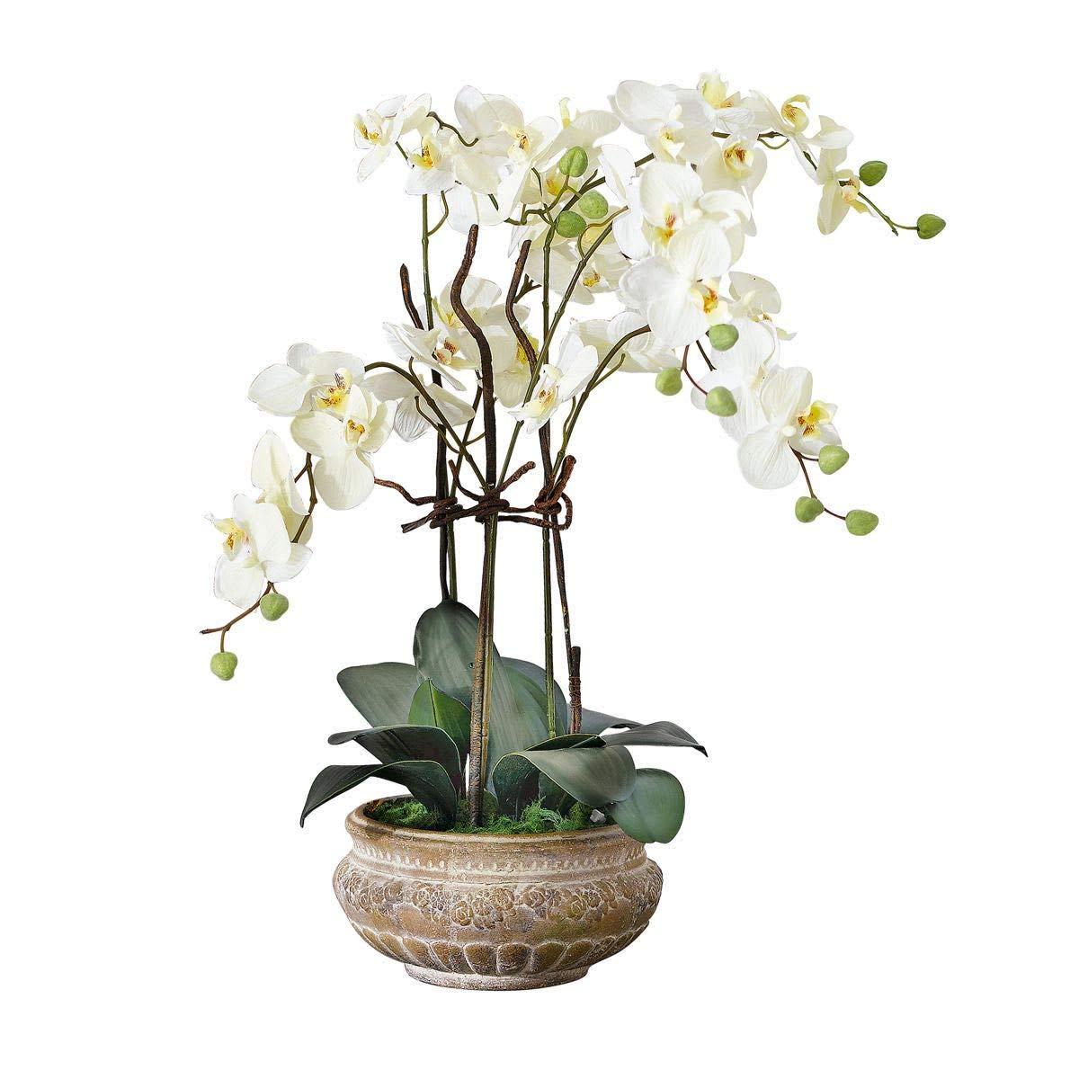 Kunstpflanze Orchidee weiß-creme mit Übertopf aus Keramik braun 58 cm hoch PureDay