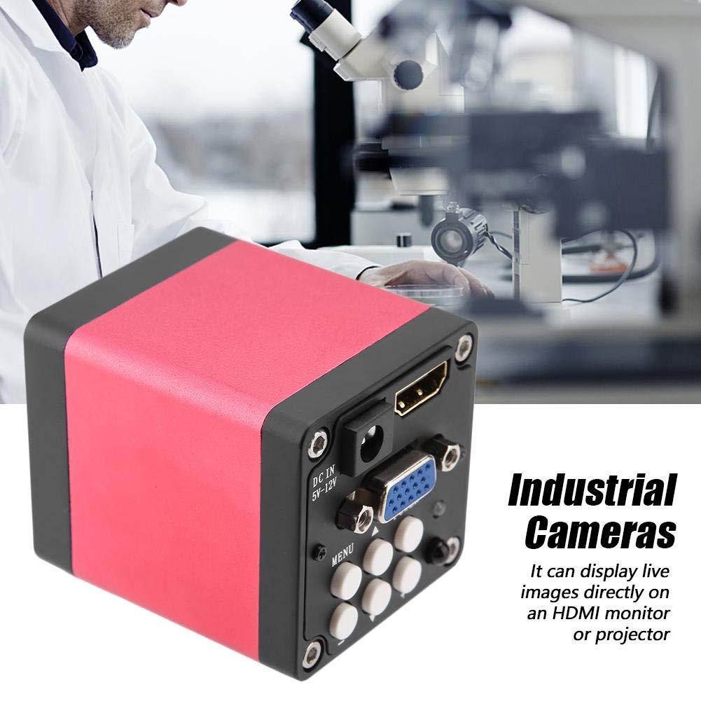 EU Plug KP-200D 13MP 60F//S C/ámara de microscopio industrial de salida HDMI negra para usted C/ámara de microscopio industrial digital