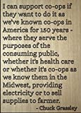 """""""I can support co-ops if they want to do it as we've known co-ops in America for 150 years - where they serve the purposes of the consuming public, whether it's health care or whether it's co-ops as we know them in the Midwest, providing electricity ..."""