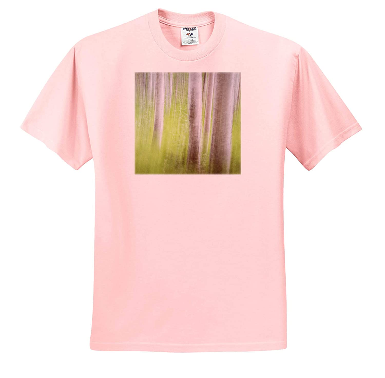 Alaska 3dRose Danita Delimont Abstracts - Adult T-Shirt XL USA ts/_314459 Abstract Motion Blur of Birch Trees