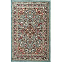 33 x 50 Aqua Blue Persian Medallion Pattern Area Rug, Elegant Traditional Oriental Design, Motif Textured Print, Features Antimicrobial, Non Skid Backing, Vibrant Colors, High-Class Synthetic