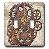 3dRose lsp_108102_2 Steam Punk Cog Wheels in Bronze Double Toggle Switch