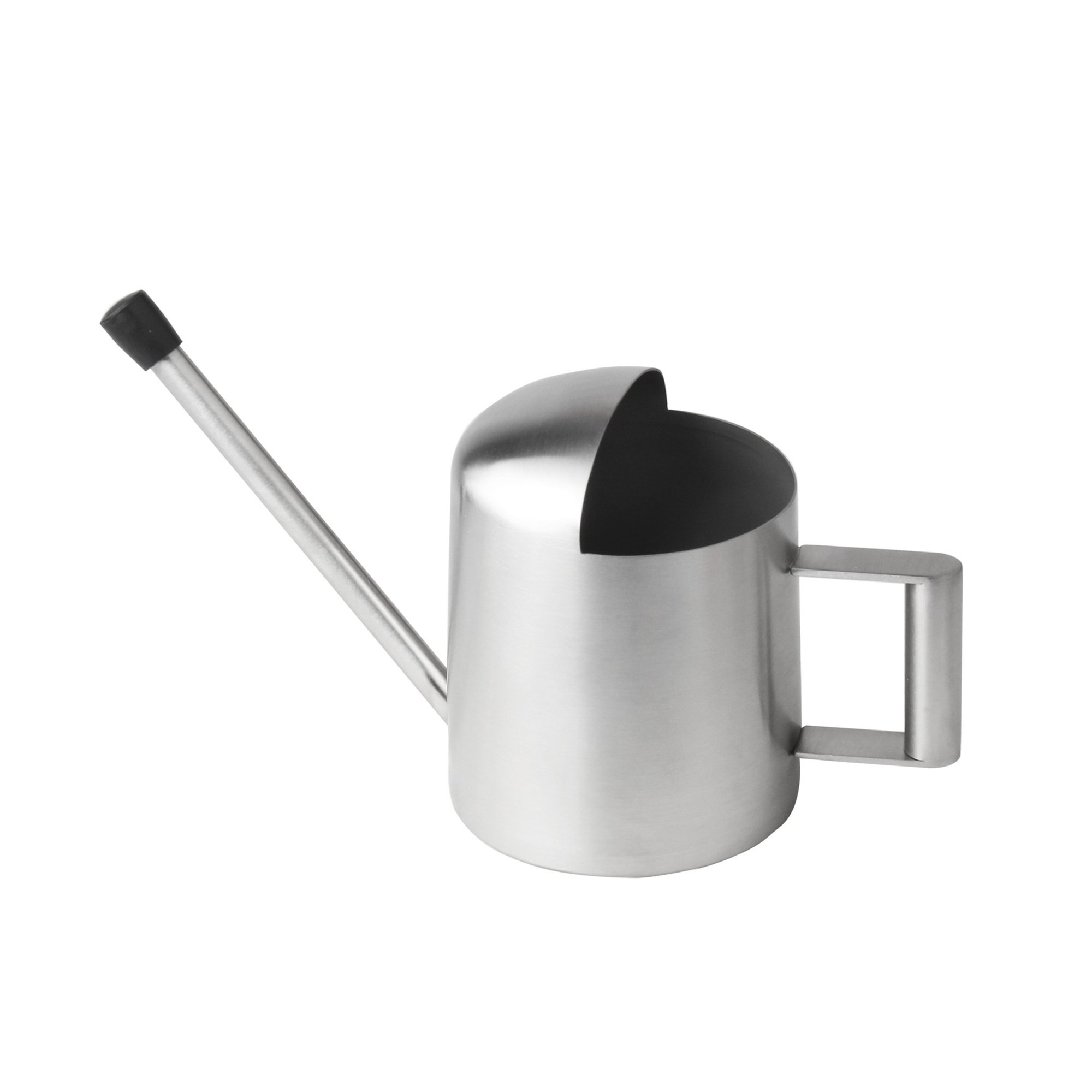 BeautiLife Long Spout Brushed Stainless Steel Watering Can Modern Style Watering Pot for Indoor Outdoor Garden Plants Houseplant(300ml)